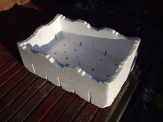 The ever-useful polystyrene veggie box